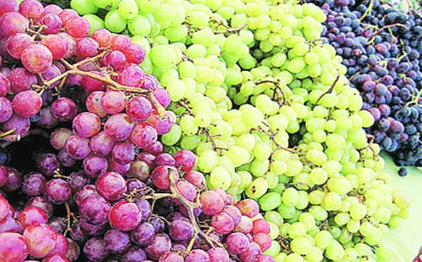 12 Benefits of Eating Grapes & Its Nutrition Facts
