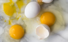 10 Health Benefits of Eating Eggs